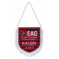 FANION KALON A VIE!